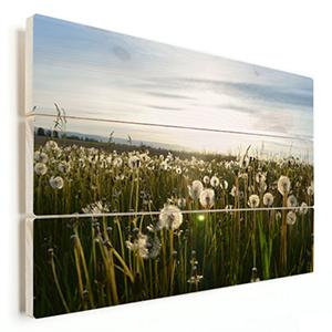natuurfoto bloemenveld op hout